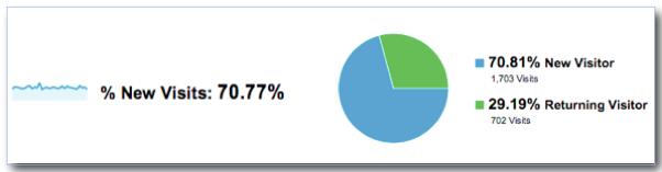 Percent New Visits - Google Analytics