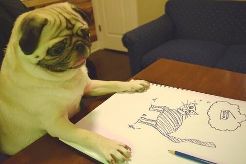 Pug drawing cat