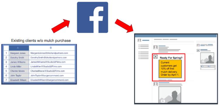 Facebook_Custom_Audience_Example_.png