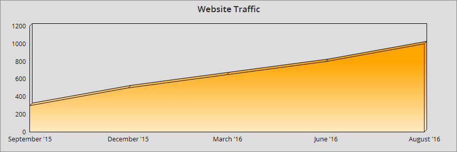 Website Traffic graph